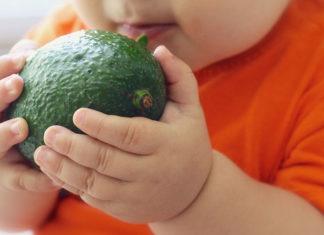 Avocado To Babies
