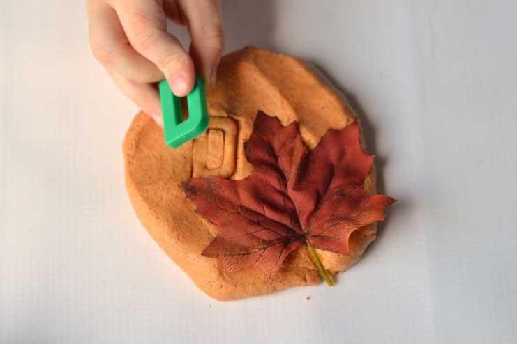 Leaf-Impression