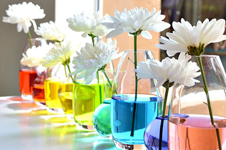 Rainbow Flower Decoration
