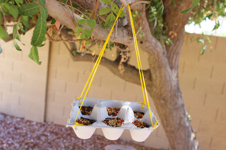 Make-a-bird-feeder