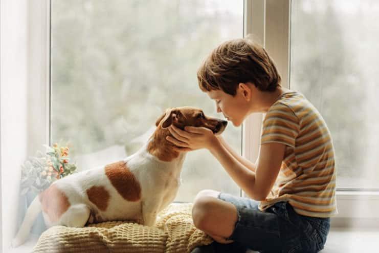 Help them do pet care